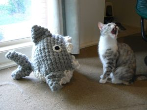 Who is mightier, the shark or the cat?